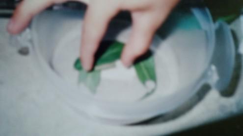 marketing book 008